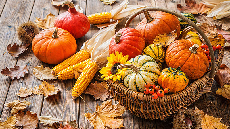 LebensArt Herbstzauber