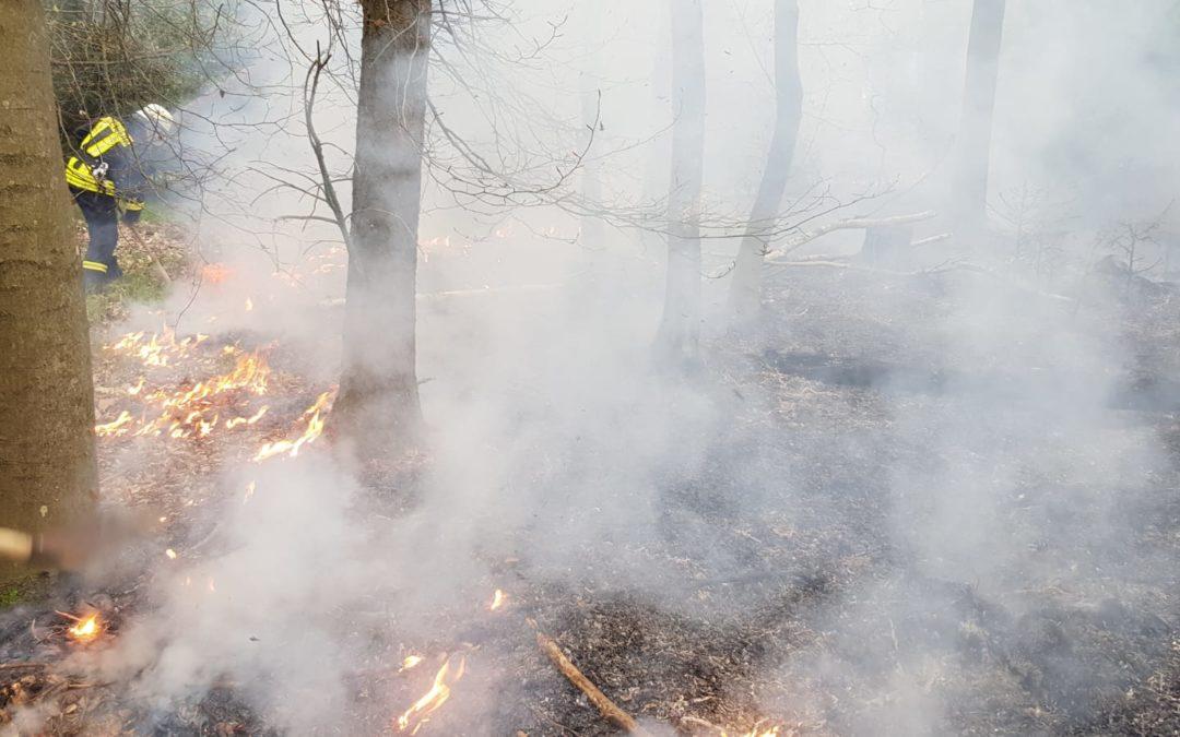 Nr. 3 Waldbrand